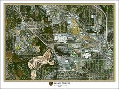 9 Best Wake Forest images | Wake forest university, Wake forest ...
