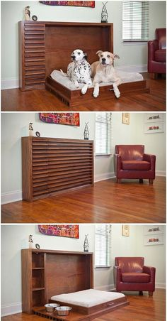 """Need a space-saving solution for all the """"pet stuff"""" in your small apartment? This bed is everything you'd expect from a standard Murphy bed, but built for your pooch and all the stuff that comes with them! #dogdiybed"""