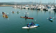 Discover the world of sea kayaking in Half Moon Bay on the Northern California coast, a dynamic and diverse environment you can explore in a kayak. California Coast, California Dreamin', Northern California, Double Kayak, Wild Waters, Kayak Rentals, Half Moon Bay, East Bay, Paddle Boarding