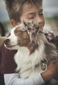 Find Out More On The Energetic Australian Shepherd Puppies Personality Cute Puppies, Cute Dogs, Dogs And Puppies, Doggies, Animals And Pets, Cute Animals, Australian Shepherds, Mundo Animal, Belle Photo