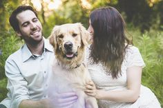 Engaging Tails:  Wilson the Golden Retriever