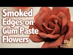 How to Add Smoked Edges to Gum Paste Flowers with Bronwen Weber.  And Check out this Amazon deal: Wilton Gum Paste Flowers Set by Wilton http://www.amazon.com/gp/product/B004S85ADM?ie=UTF8=learncente0b-20=shr=213733=393185=B004S85ADM_=sr_1_1=gumpaste%20flowers=1341769214=8-1  $21.62