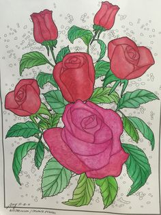 Coloring pages using watercolor and colored pencils