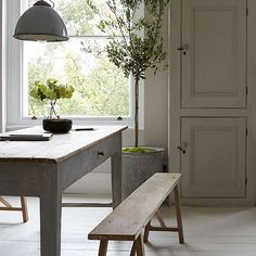 Great muted colors and love the olive tree in the galvanized can.