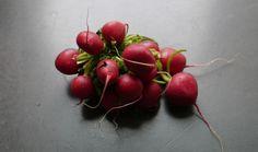 Radicle radishes