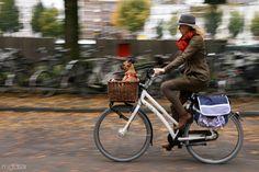 Fall colors inAmsterdam. bike