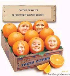 ORANJE-FAMILIE Mooi zo! Weer een geinig plaatje toegevoegd! Weg met die Oranje-familie! Wat een bolle koppen!  En bovendien: een monarchie is toch zeker niet meer van deze tijd? Dat hoort thuis in een feodaal stelsel! Leven we nog in de Middeleeuwen? Ik dacht het niet! Exporteren die hap, en nooit meer terugnemen! (tag: satire - parodie, De Oranje-familie)