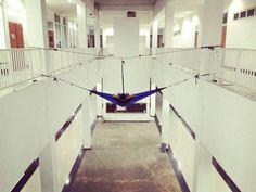 Keep Hanging Everywhere  . . . Loc : Teaching Lab. IPB Dramaga Bogor #hammock #hammocking #hammocktime #hammocklife #hammockliving #hammockextreme  #getoutandhammock #keephanging #salamgantung #hammockeverywhere  #hammockersindonesia #hammockid #setyourselffree #tgif #solohammockers #SHFotoKontes1 by @hade.alhazmi