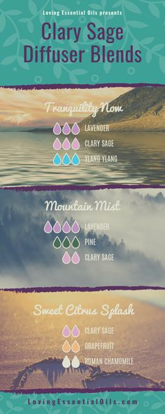 DIY Essential Oil Recipes Clary sage essential oil is renowned for its ability to assist with female Clary Sage Essential Oil, Essential Oil Uses, Doterra Essential Oils, Young Living Essential Oils, Fitness Models, Essential Oil Diffuser Blends, Osho, Raindrop Technique, Female