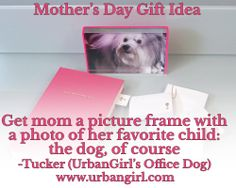 Mother's Day Gift Idea--Kate Spade photo frame with a picture of her favorite child.  Most of us think the dog is always the favorite ;)  www.urbangirl.com