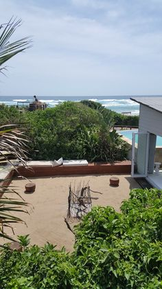 White Pearl Resort, Ponta Mamoli, Moçambique | Viaje Comigo - Part 2 Africa, Plants, Traveling, Places, Plant, Planets