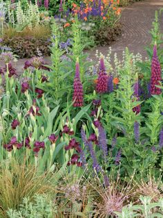 Country style garden ideas from HGTV