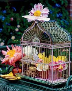 flowers in birdcage