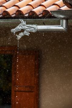 dragon rain spouts in a home designed by the architect Lourdes Abad of Cuenca - NYTimes.com