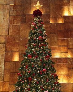 Trump Tower 2012 Christmas Tree, Manhattan, New York City