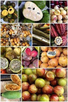 Um passeio pelo Mercado de Surquillo em Lima e curiosidades da comida peruana