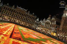 Brussels Flower Carpet 2014