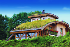 wood and glass exterior with green roof Natural Building, Green Building, Roof Design, House Design, Wood Frame House, Architecture Organique, Roofing Options, Residential Roofing, Residential Architecture