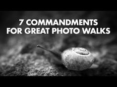 The 7 Commandments of Great Photo Walks: Digital Photography Review
