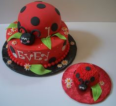 Lady bug cake, for the party and for the baby