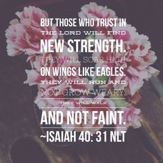 New strength...