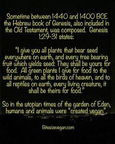#ommanipadmehum #vegan #compassion #bethechange #calidragonveganicfarm #crueltyfree #animalliberation #veganfood #veganism  #veganlife #dragonfruit #pitaya #heirloomtomatoes #god #buddha #bodhicitta #doyourownresearch #tsongkhapa #ajahnchah #moringa #bodhitree #myrobalanfruit #milarepa #padmasambhva #manjusri #avalokiteshvara #lemonguava #strawberryguava