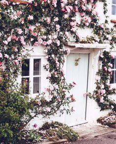 A pink house covered in pink roses. What could make you happier?