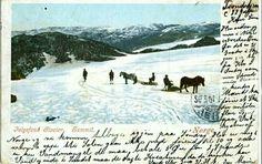 Folgefonna glacier isbre i Hordaland fylke.  Folgefonnaer Norges tredje størsteisbreog ligger på Folgefonnhalvøya iHardangerog dekker områder iJondal,Ullensvang,Odda,EtneogKvinnheradkommuner, alle iHordalandfylke. Folgefonna er en av de sørligste i Norge.