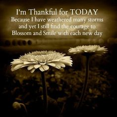 So thankful for where I am today....only by the grace of God. Please don't give up, the dawn is coming.