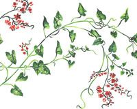 Coral Vine Floral Wall Stencil by DeeSigns