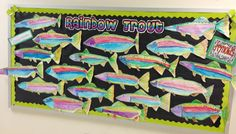 Apex Elementary Art- Rainbow Trout