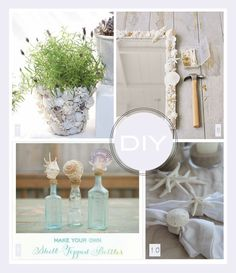 diy-coquillages-shell-decor2