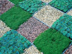 Create a checkerboard design using gravel, wood dividers and low-growing, compact Acaena and sedum. I thought I would use pea gravel and the same ground cover (Acaena) to make a fun checkerboard and patio! Gravel Landscaping, Tropical Landscaping, Landscaping Ideas, Landscape Design, Garden Design, Landscape Architecture, Path Ideas, Design Jardin, Dream Garden