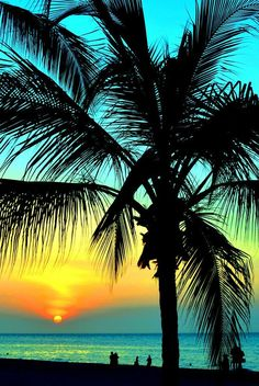 (Hawaii Sunset) beaches, islands, sea shore, relax, water, vacations, sand, destinations, tropical, tropics, warm, ocean, sea, seas, paradise, palm tree, palm trees, salt water, salt life, #beaches #islands #vacations Repinned By: Live Wild Be Free www.livewildbefree.com Cruelty Free Lifestyle & Beauty Blog. Twitter & Instagram @livewild_befree Facebook http://facebook.com/livewildbefree?utm_content=buffer9caad&utm_medium=social&utm_source=pinterest.com&utm_campaign=buffer