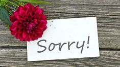 Sorry note with a flower. Apology Quotes For Him, Im Sorry Quotes, Sorry Images, Apologizing Quotes, Animated Emoticons, Romantic Gif, Friends Image, Custom Wallpaper, Place Card Holders