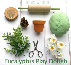 Calming Natural Eucalyptus Play Dough – The Imagination Tree
