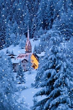 30 Ideas nature winter forest landscapes for 2019 Forest Landscape, Winter Landscape, Christmas Scenes, Winter Christmas, Winter Snow, Fall Winter, Christmas Tree, Winter Pictures, Christmas Pictures