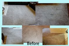 A Mommy trying to Glorify God: How I Make My Carpet Look New for Under $2