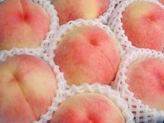 Fruit of the month - Peaches. Peach Aesthetic, Shades Of Peach, Sweet Peach, Just Peachy, Orange, Peach Colors, Food And Drink, Sweets, Aesthetics