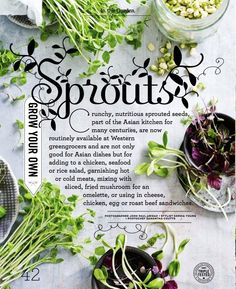 Sprouts layout design