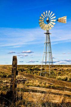 """""""Windmill"""" by Athena McKinzie"""