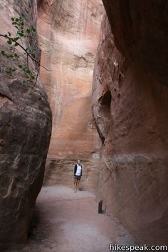 Alcove Nature Trail: description, photos, GPS map, and directions for this informative hike near Saddlehorn Visitor Center in Colorado National Monument Colorado National Monument, Gods Creation, Mother Nature, Alcove, Wilderness, Utah, Trail, To Go, Hiking