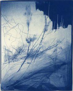 Spring Window Display, Cyanotype Process, Alternative Photography, Acid Trip, Dream Photography, A Level Art, Encaustic Painting, Modern Artists, Cool Wallpaper