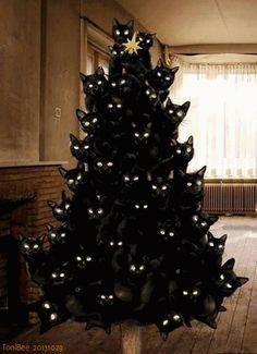 Katze versteckt sich im Weihnachtsbaum - http://www.dravenstales.ch/katze-versteckt-sich-im-weihnachtsbaum/