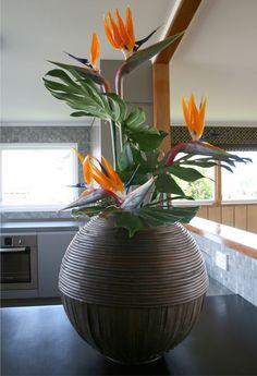 Modern DIY party decor with Bird of Paradise Tropical Flower Arrangements, Ikebana Flower Arrangement, Orchid Arrangements, Exotic Flowers, Tropical Flowers, Beautiful Flowers, Deco Floral, Arte Floral, Corporate Flowers