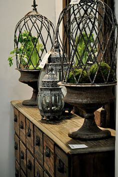 I love the green against the rustic metal over the wood. The contrast of living against old metal is beautiful.