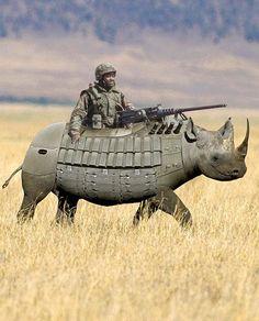 funny Rhino armur   PixoHub