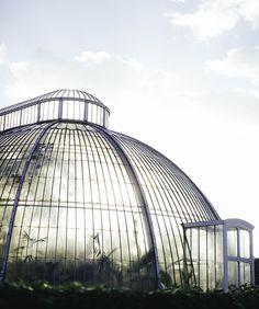 Kew Gardens . Greenhouse . London England
