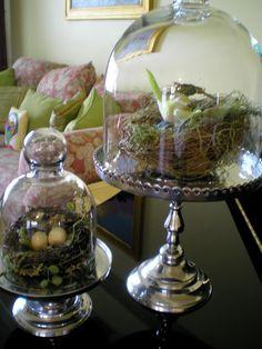 Sweet Bird Nests---love this idea!