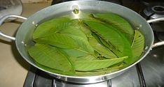 HealthFreedoms – Amazing Health Benefits of Guava Leaves for Skin, Hair and Health